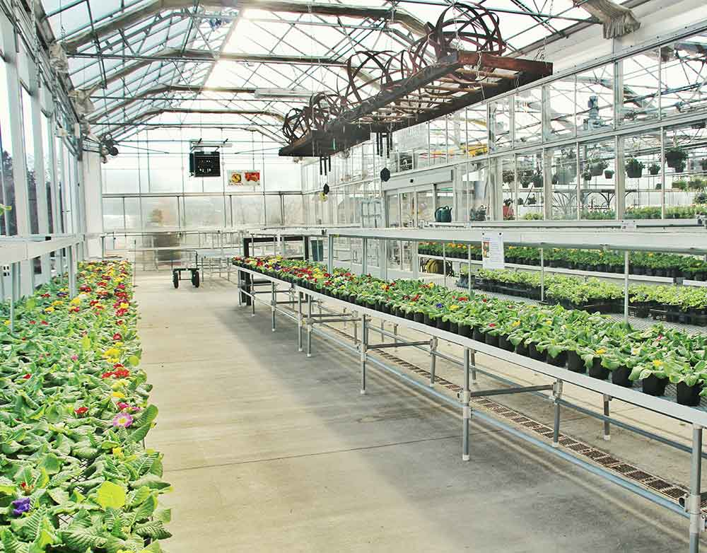 Gewächshaus Pflanzenbedarf