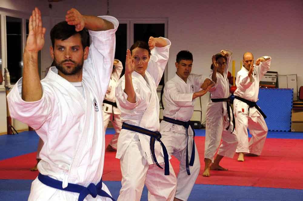 Leistungsdiagnostik Kampfsport Trainingsplanung